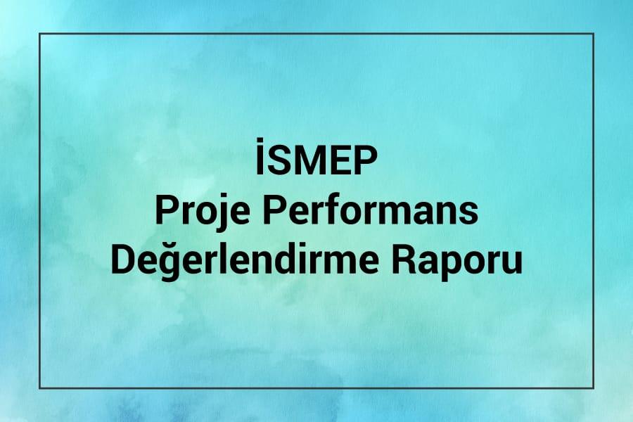 ISMEP Proje Performans Değerlendirme Raporu